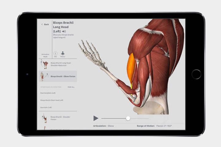 complete-anatomy2-720x720